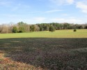 Farm for Sale! 63 Acres in Hanover County