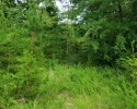 Secluded Woodland Tract! 28+ Acres in Nottoway