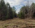Timberland Tract - 166.5 Acres in Charlotte County