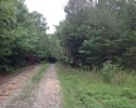 Wooded Tract - 152.7 Acres in Middlesex