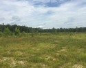 Farmland-Recreational Tract! 147+ Acres in Sussex County