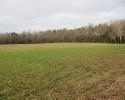 Farm For Sale! 103.8 Acres in Hanover County, Virginia