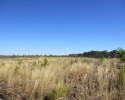 Ideal Large Homesite - 70 Acres in Prince George