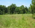 Rappahannock Riverfront Property! 235+ Acres in Middlesex County