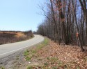Timber-Recreational Tract! 343+ Acres in Buckingham