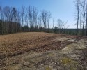 Wooded Building Site! 103.73 Acres in Caroline